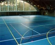 спортивные покрытия рулонные Украина Днепропетровск Киев